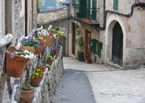 Weekly Market of Valldemossa