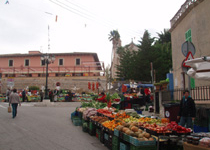 Traditional Market of Calvia Vila