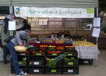 Ecological Market in Palma