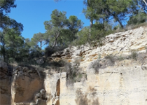 La tardor als museus: The quarries of Bellver'